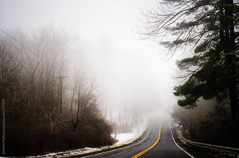 road through forest and fog in winter by Deirdre Malfatto for Stocksy United