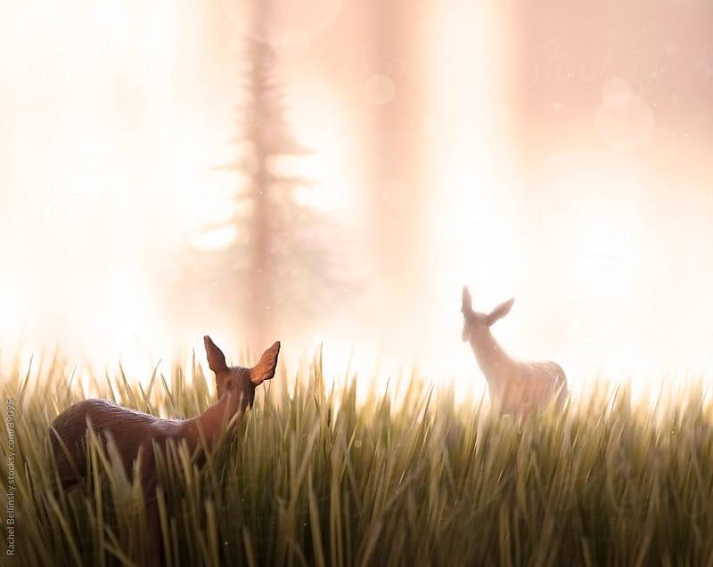 Two toy deer look back into pink misty forest light by Rachel Bellinsky for Stocksy United