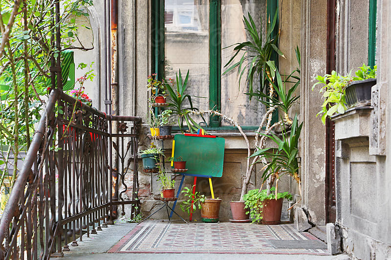 porch with plants by Sonja Lekovic for Stocksy United