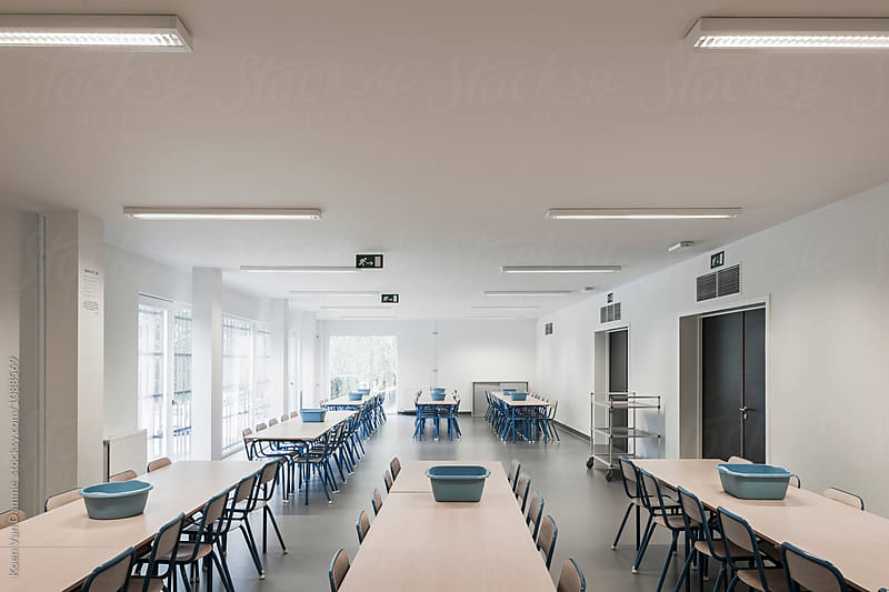 Dining room school by Koen Van Damme for Stocksy United