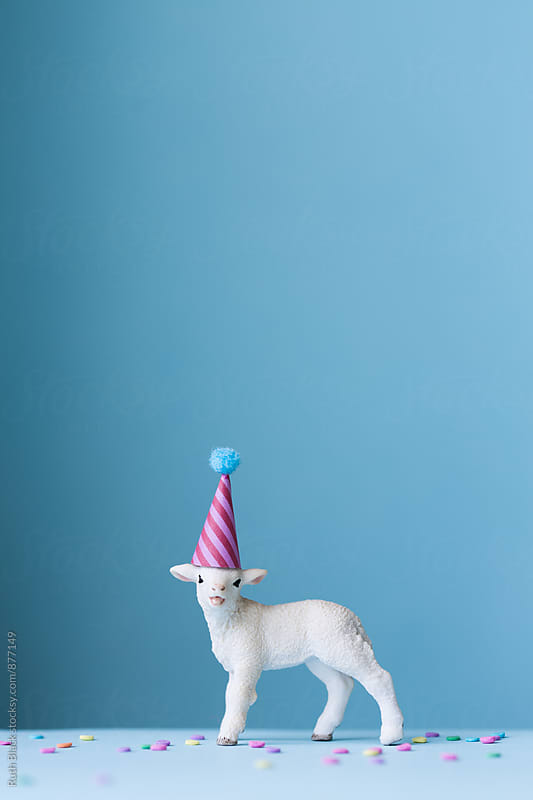 Toy lamb wearing a party hat by Ruth Black for Stocksy United