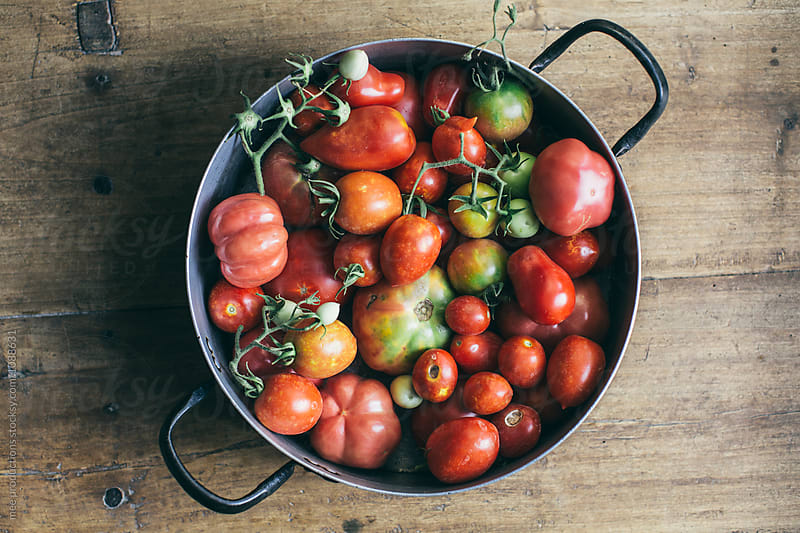 Variation of tomatoes on a retro pan by mee productions for Stocksy United