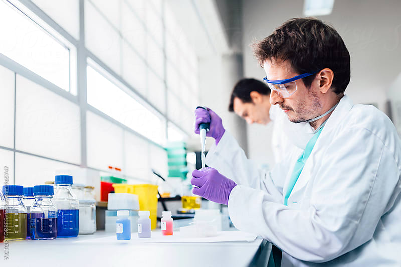 Biologists Working in a Professional Laboratory by Victor Torres for Stocksy United
