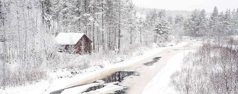cold winter scenery by Andreas Gradin for Stocksy United