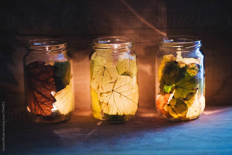 Candles in a leaf jar by Jovana Rikalo for Stocksy United