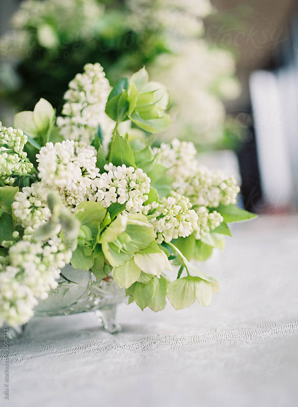 White lilac arrangement by Julia Kaptelova for Stocksy United