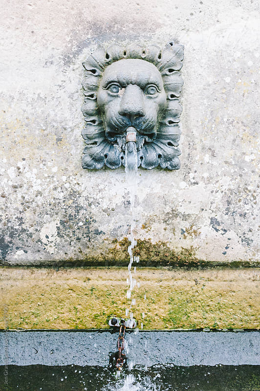 Lion Fountain by Jen Grantham for Stocksy United