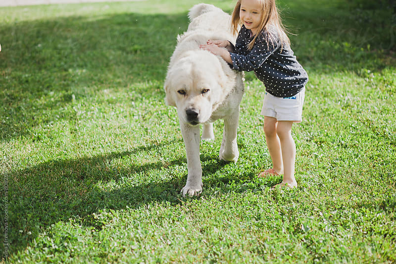 Little girl playing with a giant dog by Irina Efremova for Stocksy United