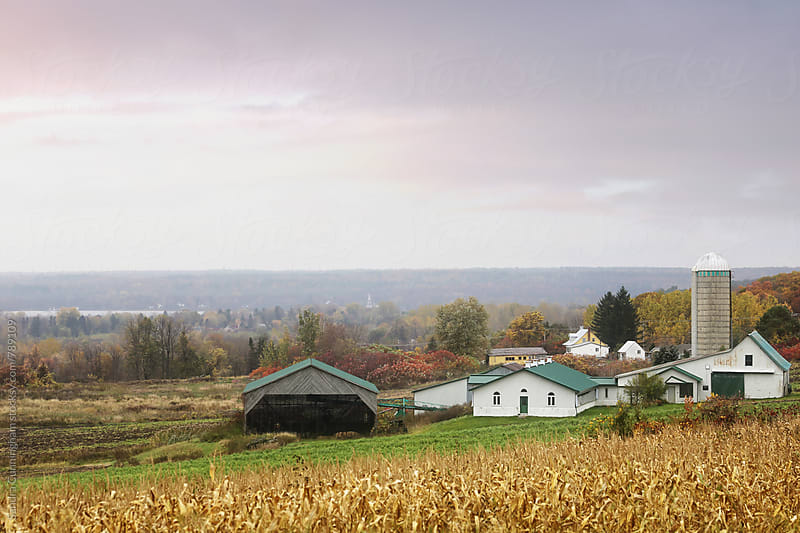 Autumn scene of country farm in Quebec by Sandra Cunningham for Stocksy United
