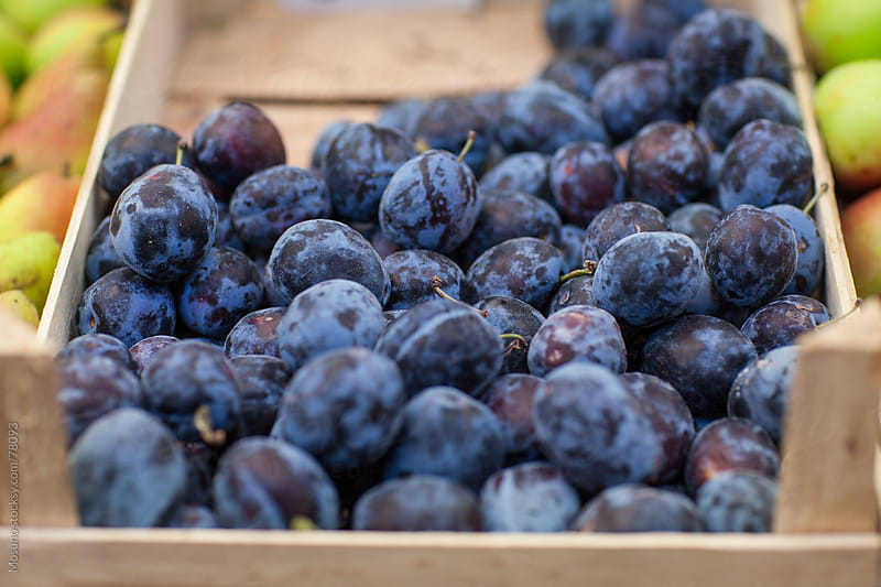 Crate of fresh organic plums. by Mosuno for Stocksy United
