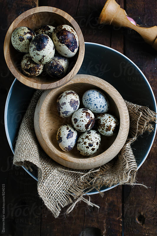 Quail eggs in bowls. by Darren Muir for Stocksy United