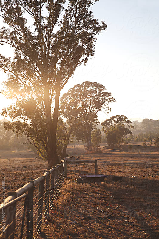 Sunrise early morning on a farm in Australia by Natalie JEFFCOTT for Stocksy United