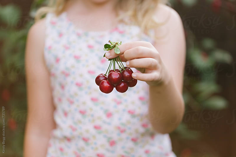 Anonymous girl holding a bunch of cherries by Kirsty Begg for Stocksy United