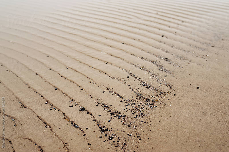 Lines in the Sand by Claudia Lommel for Stocksy United