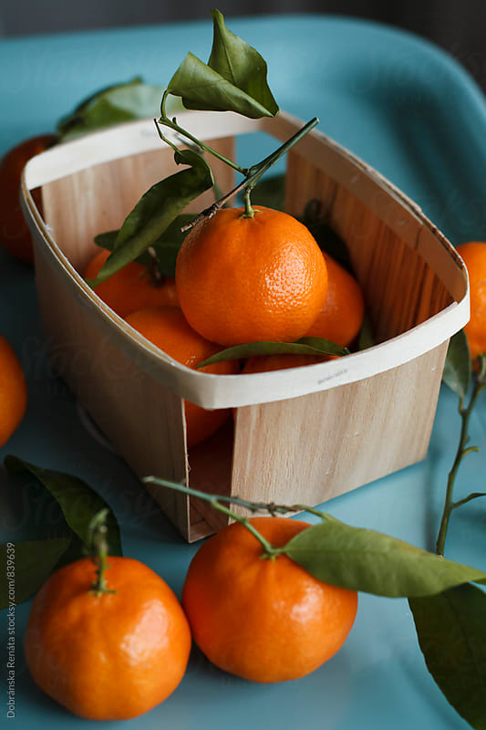 Mandarin orange by Dobránska Renáta for Stocksy United