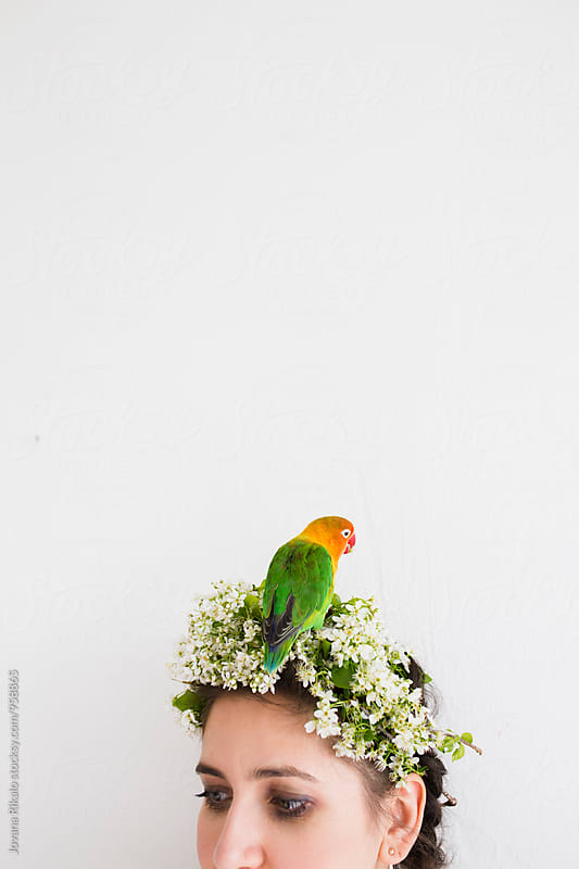 Parrot standing on woman's head by Jovana Rikalo for Stocksy United