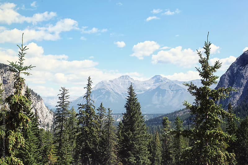 Mountain, trees and sky in the Rockies by Sandra Cunningham for Stocksy United