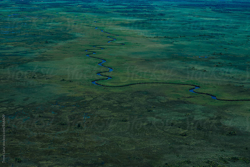Aerial landscape of colorful vibrant Okavango Delta in Africa by Trent Lanz for Stocksy United
