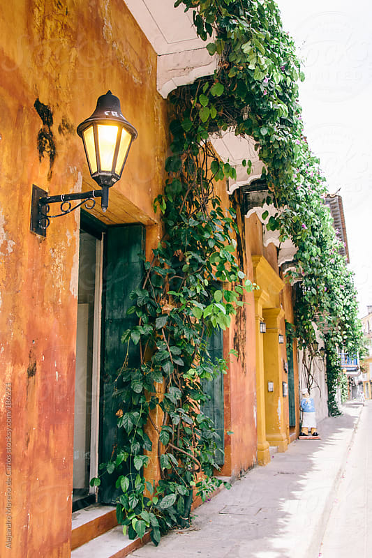 Street with lamppost and climbing plants with yellow walls in Cartagena de Indias, Colombia by Alejandro Moreno de Carlos for Stocksy United