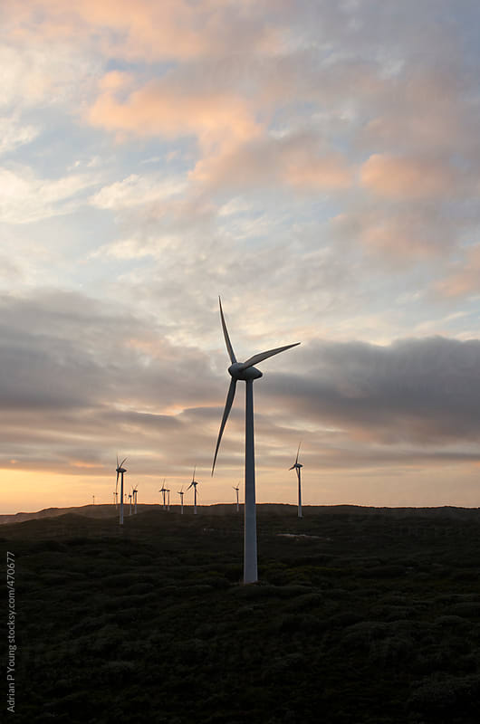 Wind Turbines At Sunset by Adrian Young for Stocksy United