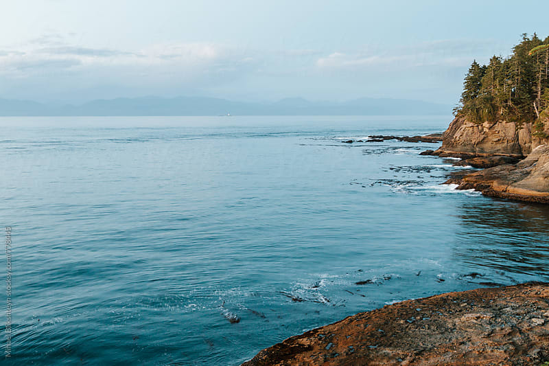 Landscape view of a cliff and ocean at sunset in the Pacific Northwest by Mihael Blikshteyn for Stocksy United
