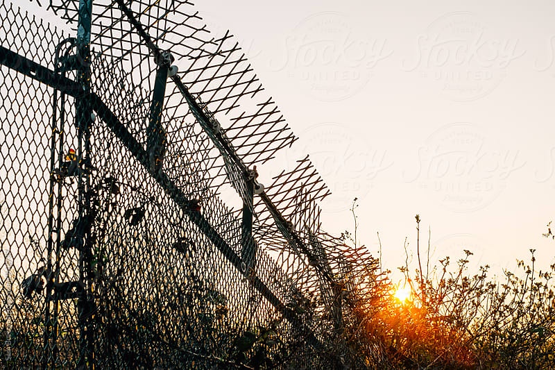 Wire fence by Sam Burton for Stocksy United
