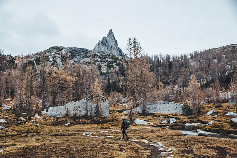 Backpacker in wild landscape by Tari Gunstone for Stocksy United