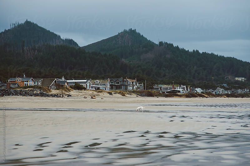 Beach houses lined up on the Oregon Coast with foggy mountains behind them. by Kate Daigneault for Stocksy United