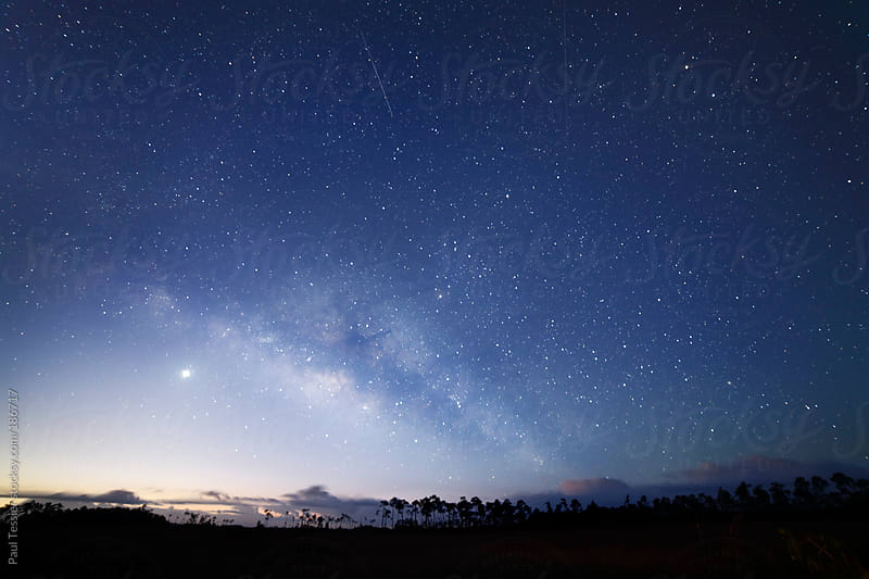 Night Sky over Everglades National Park by Paul Tessier for Stocksy United