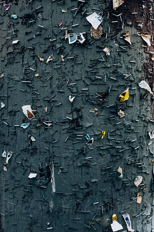 Close up of staples on paint covered telephone pole by Paul Edmondson for Stocksy United