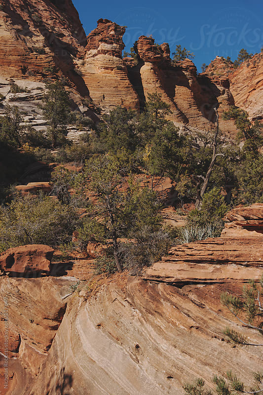 Zion Rock Formations by Nicholas Roberts for Stocksy United