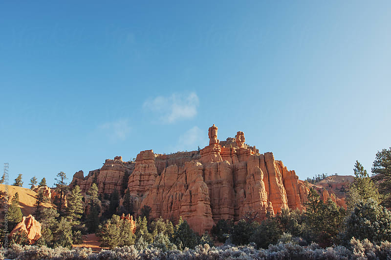 Red Canyon in Dixie National Forest by Nicholas Roberts for Stocksy United