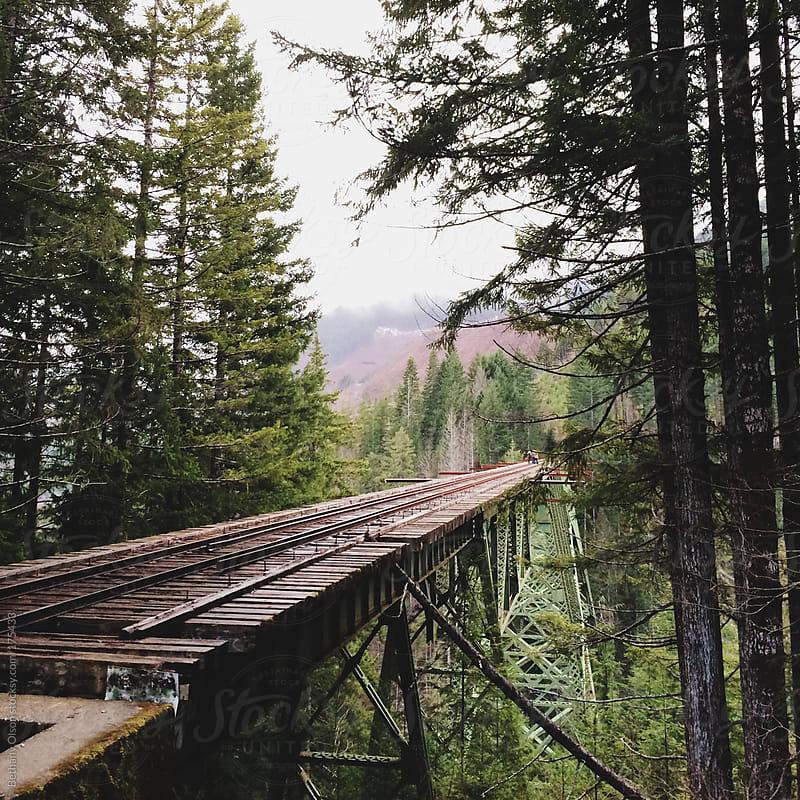 Vance Creek Bridge by Bethany Olson for Stocksy United