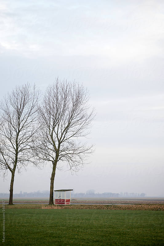 Rural bus stop in The Netherlands by Marcel for Stocksy United