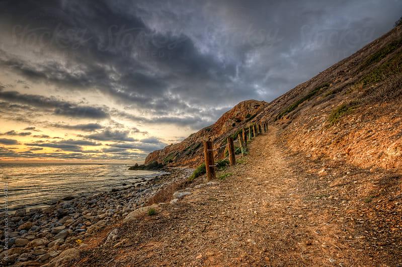 Path by Neil Kremer for Stocksy United