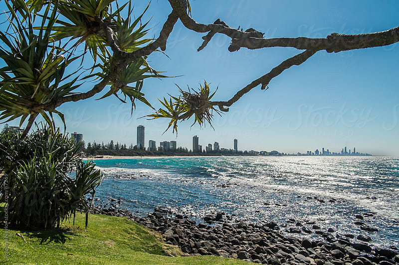 Skyline of Australia's famous Surfers Paradise by Rowena Naylor for Stocksy United