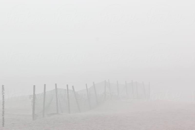 Sand Fence on beach in dense fog by Melanie Kintz for Stocksy United