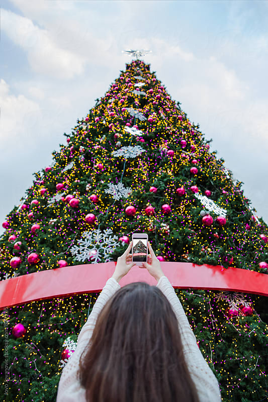 Woman taking a photo of a tall Christmas tree by Jovo Jovanovic for Stocksy United