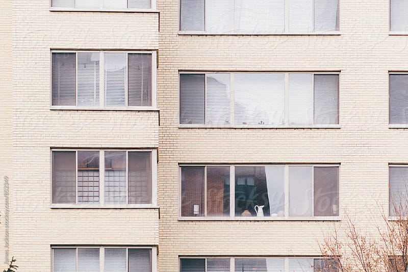 City apartment windows by James Jackson for Stocksy United