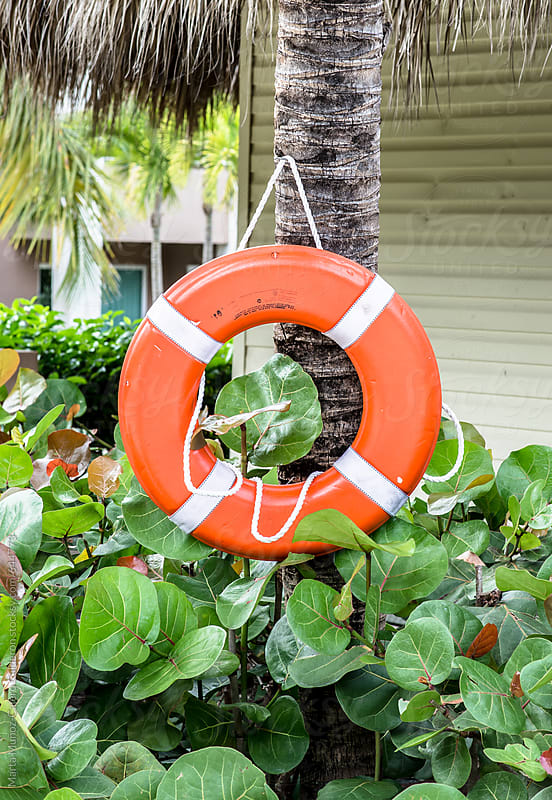 Lifesaver hanging from a palm tree in a resort by Marta Muñoz-Calero Calderon for Stocksy United