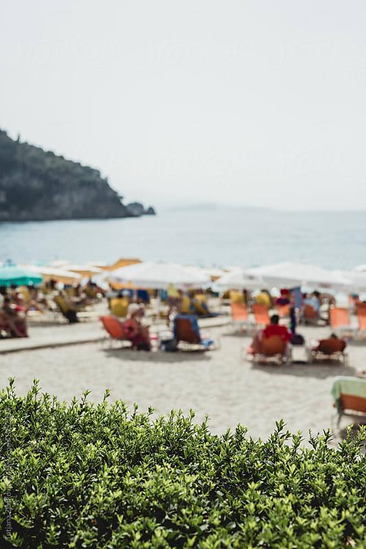 Beach by Tatjana Zlatkovic for Stocksy United