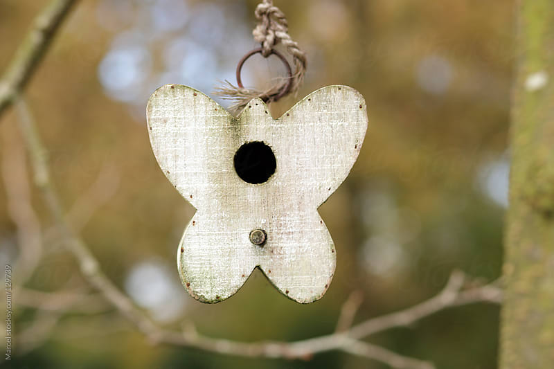 Butterfly birdhouse by Marcel for Stocksy United