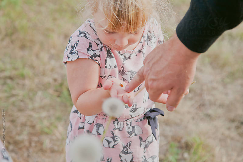 Young girl playing with a lady bug. by Carey Shaw for Stocksy United