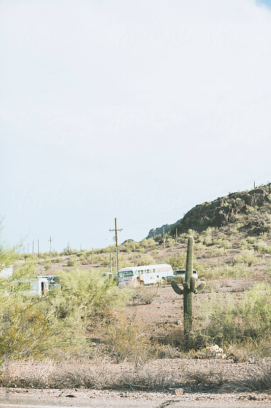 Cactus and caravans in the Arizona Desert by Image Supply Co for Stocksy United