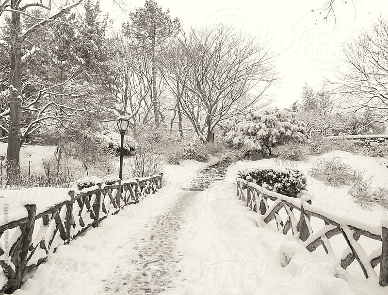 Central Park Winter - Snowy Path and Wooden Fence by Vivienne Gucwa for Stocksy United