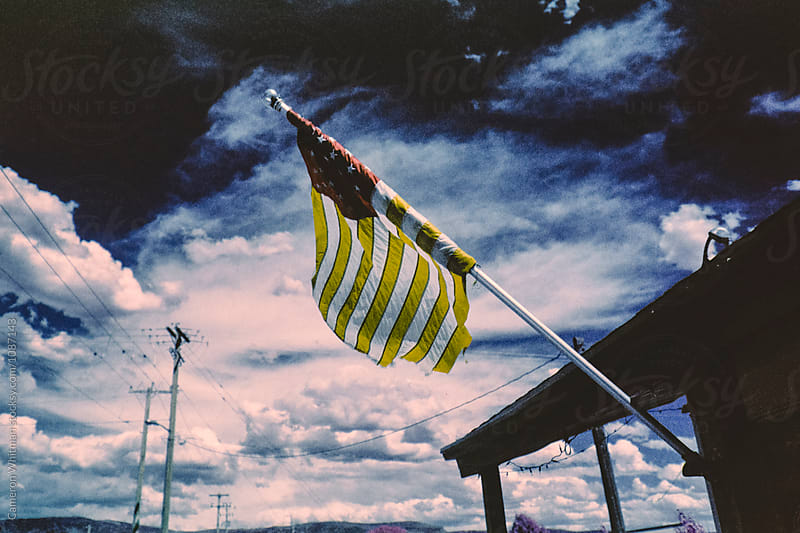Yellow US Flag by Cameron Whitman for Stocksy United