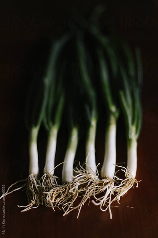 Scallions, vertical by Marija Kovac for Stocksy United