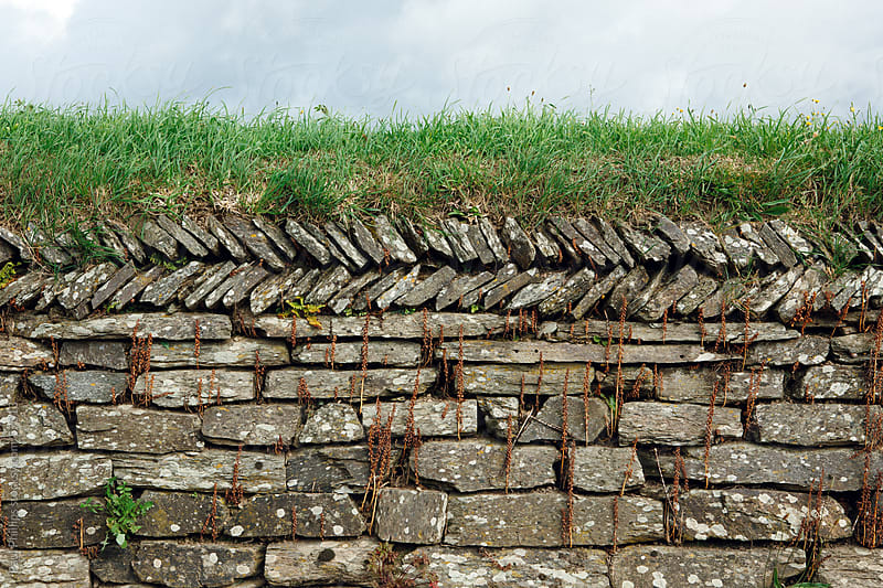 Drystone Wall by Paul Phillips for Stocksy United
