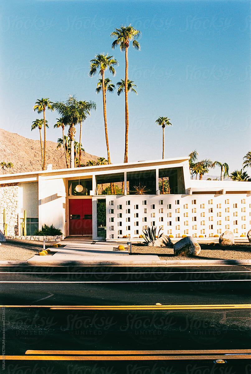 Midcentury Modern Architecture With Tall Palm Trees Shot On
