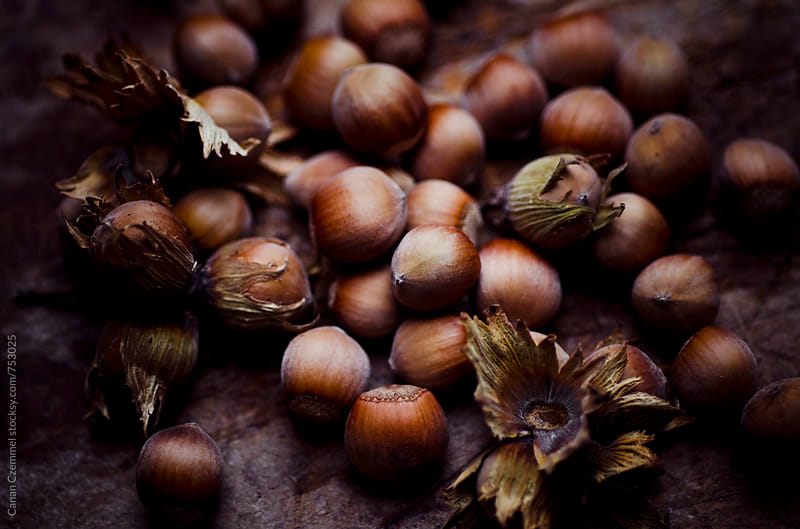 hazelnuts by Canan Czemmel for Stocksy United